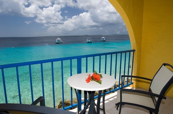 Divi flamingo beach resort and casino updated 2018 prices reviews photos bonaire - Dive e divi ...