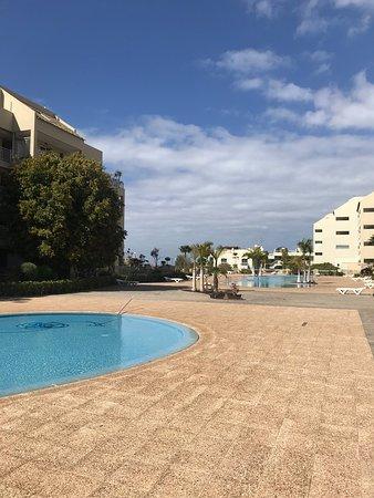 Palm-Mar Photo