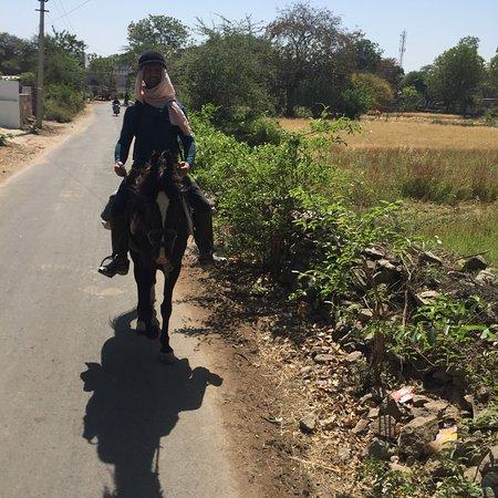 Krishna Ranch: photo4.jpg