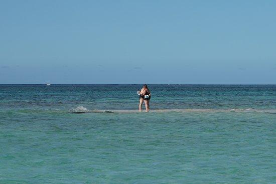 Instant romantique sur un ilet entouré de corail et de poissons :)