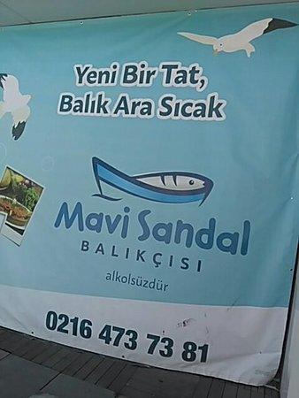Pendik District, Tyrkia: MarinTürk