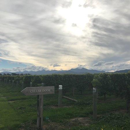Renwick, Selandia Baru: photo1.jpg