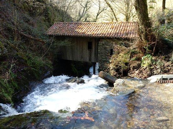 Elizondo, Spain: Sendero Infernuko Erreka