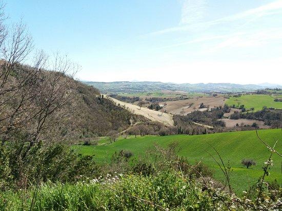 Serrungarina, Italy: panorama dal giardino