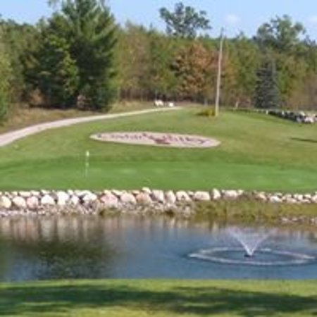 Comins, MI: Great view of #15