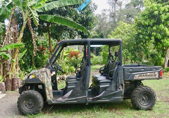 Holualoa, HI: 4WD tour is excellent