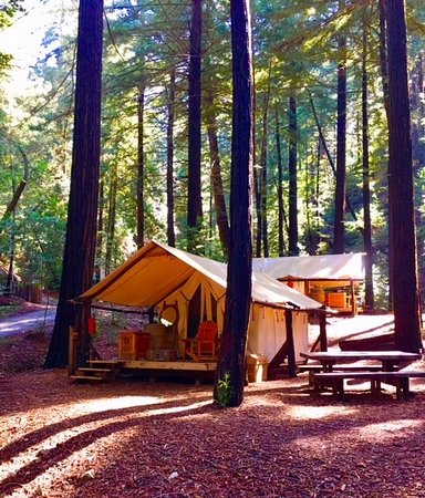 Glamping In The Redwoods Picture Of Ventana Big Sur An Alila Resort Tripadvisor
