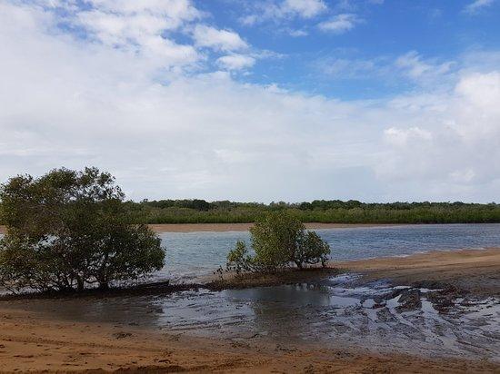 Tannum Sands, Australia: 20180401_150237_large.jpg