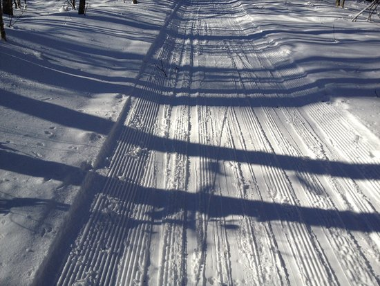 Greenville, ME: You can see skiers have tried to ski behind each other and created tracks but snow is too hard.