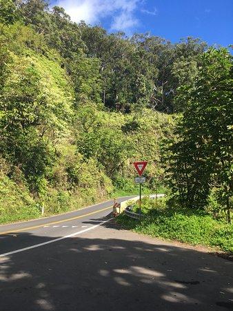 Haiku, HI: Somewhere along the road