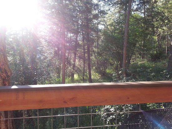 Drake, CO : This was sitting outside on the deck it was peaceful and beautiful