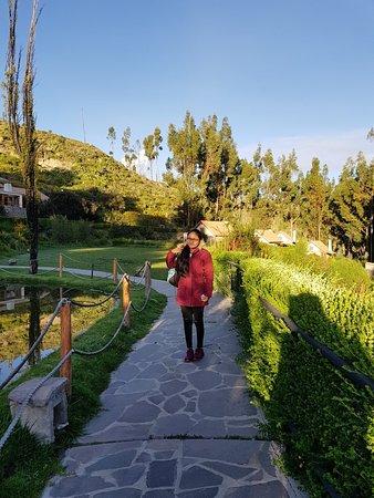 Belmond Las Casitas: 20180331_063041_large.jpg
