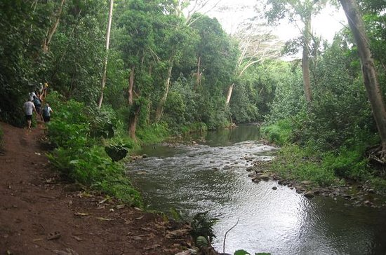Wailua River and Secret Falls Kayak ...
