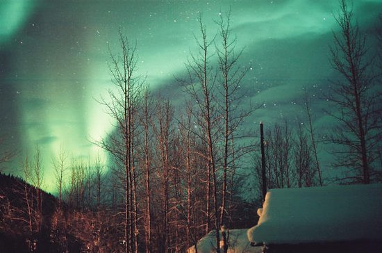 Aurora Borealis Viewing Tour To...