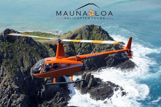 The Oahu Experience VIP: Tour en...