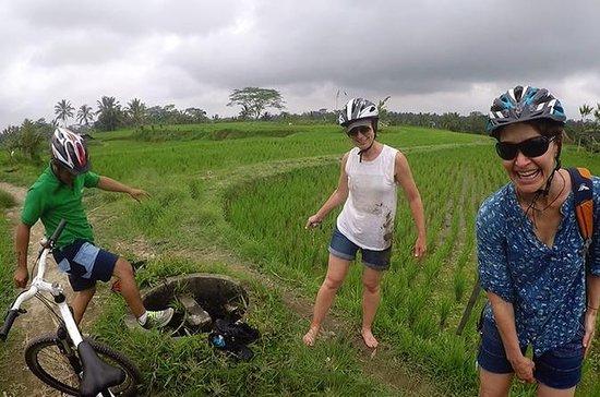 Melhor Bike Tour Cultural em Bali