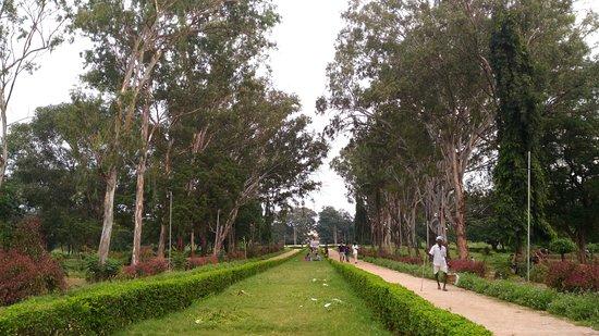 Landscape Garden Picture Of Osmania University Hyderabad