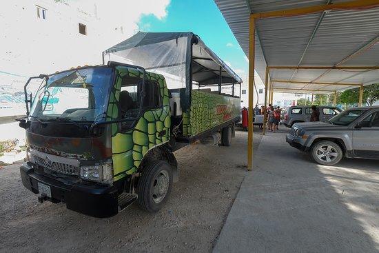 Full-Day Guided Sian Ka'an Biosphere Safari: The bus