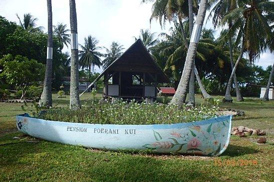 Manihi, Polinesia francese: Jardin coquet et très bien entretenu