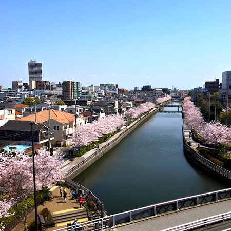 Edogawa, Japan: photo7.jpg