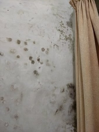 GMVN Garhwal Terrace: The room