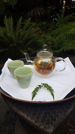 Matauri Bay, New Zealand: Wonderful pre treatment tea