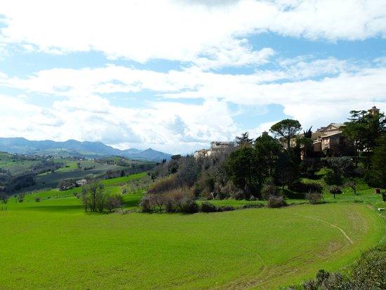 Vista di Maiolati Spontini