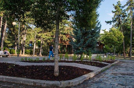 I giardini curati dai paz foto di parco montereale - Giardini curati ...