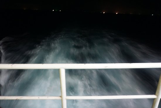Lomprayah Boat Transfer: 롬프라야타고 꼬따오로