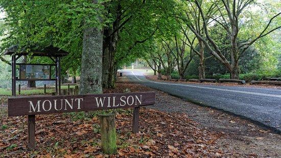 Mt Wilson, Australia: Mount Wilson Main Street