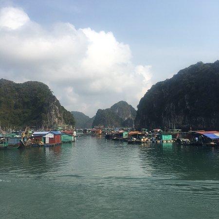 Superbe excursion d'un jour dans la baie de Lan Ha et le sud de la baie d'Halong. Superbe ! Tout