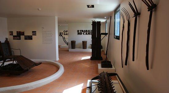 Manuel Vicente Guerreiro Ethnographic Museum