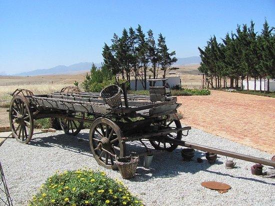 Southbroom, Südafrika: 1924 Ox Wagon