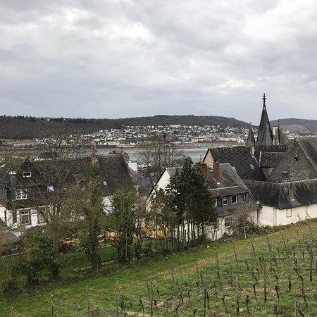 Assmannshausen, Γερμανία: photo1.jpg