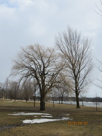Ottawa, Canadá: A beautiful view in the park