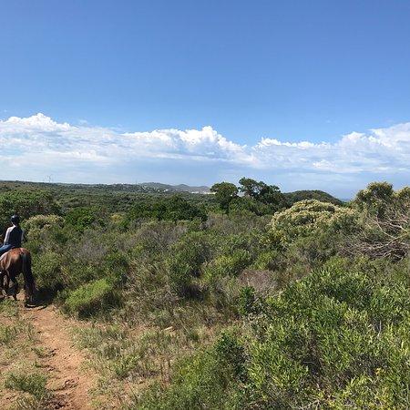 Humansdorp, جنوب أفريقيا: photo0.jpg