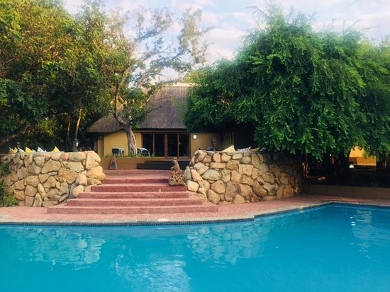 Swimming Pool at AM Spa - Kruger in Skukuza