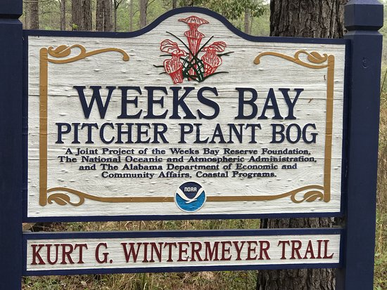 Fairhope, AL: Sign at the entrance to the trail (boardwalk)