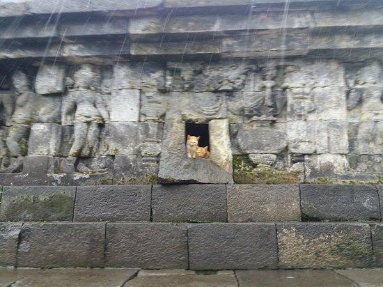 Borobudur Temple – fénykép