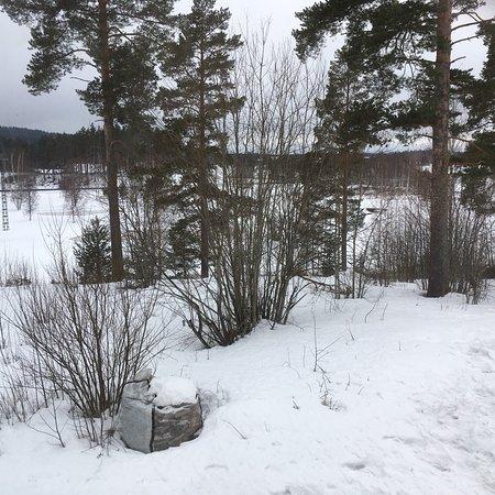 Gavleborg County, Σουηδία: photo4.jpg