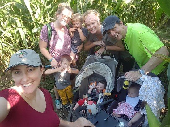 Modena, NY: Corn Maze Family Fun Activity