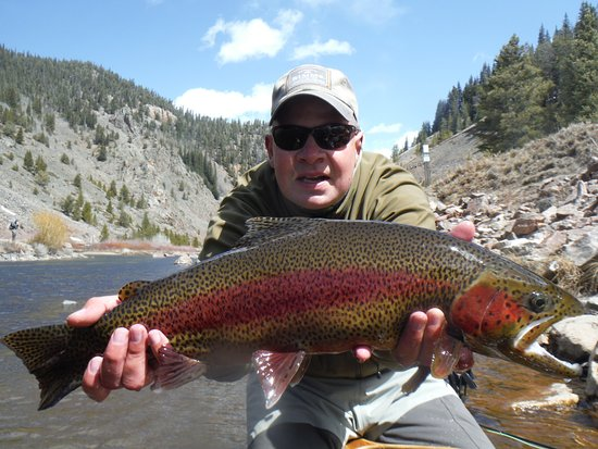 Almont, CO: Spring rainbows on Taylor River with Willowfly Angler!
