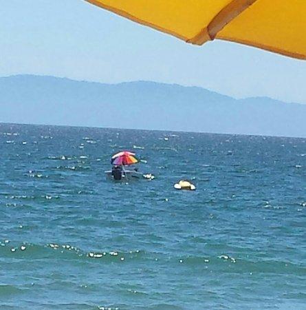El Brujo Playa: 20180403_134848-1_large.jpg