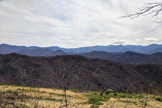 Barnardsville, Carolina del Norte: Craggy and Black Mountains