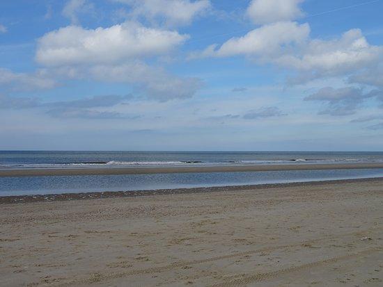 Badstrand Hargen aan Zee