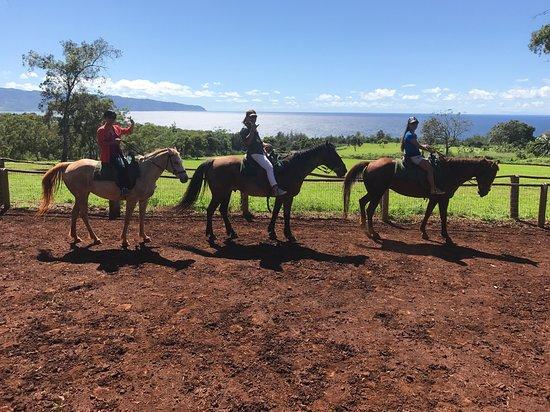 Happy Trails Hawaii
