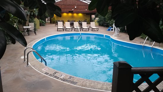 Wingfield Inn & Suites: Pool