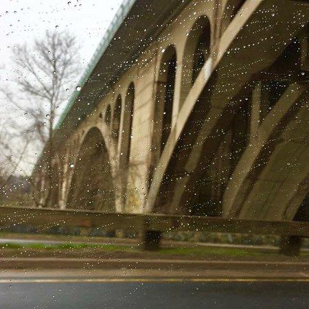 Potomac River: photo5.jpg