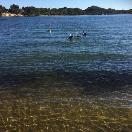 Marlo, Αυστραλία: photo2.jpg