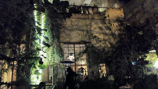 The Ruined Garden: IMG_20180210_195237248_large.jpg